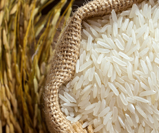 Rukmina International - Importers of Bivee Rice ( Product registration support services)